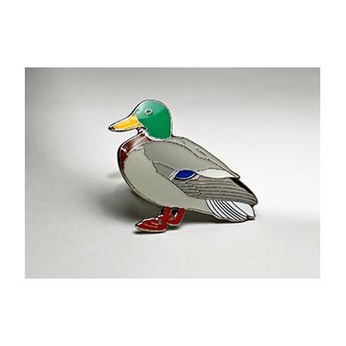 Зеленоглава патица 1