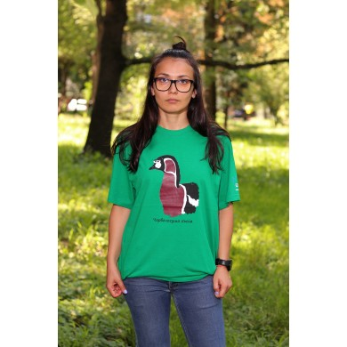 Тениска червеногуша гъска
