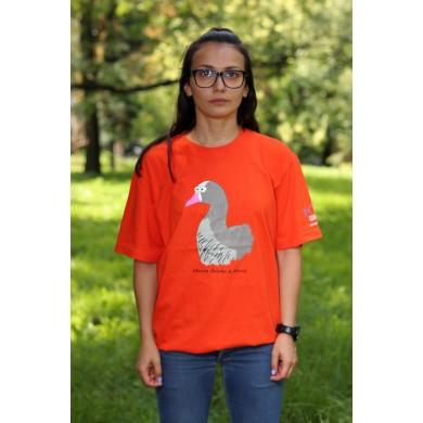 Тениска малка белочела гъска