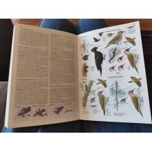 Полеви определител на птиците на Европа, Северна Африка и Близкия Изток