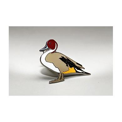 Шилоопашата патица